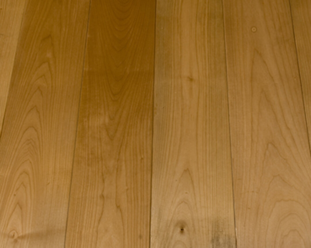 Hard Maple Wood Floor