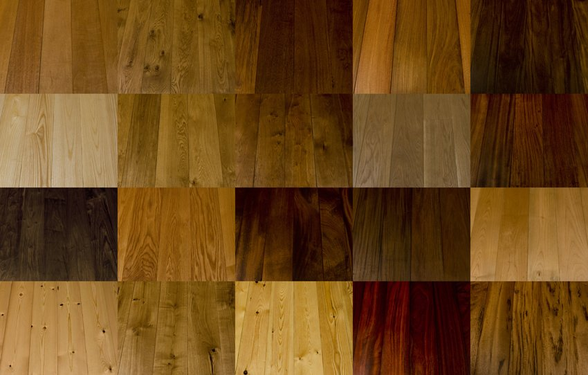 Wood Species Uipkes