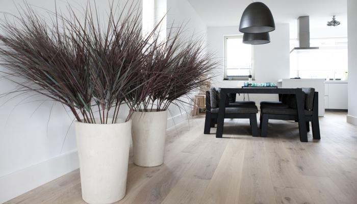 Modern Oak Wood Floor